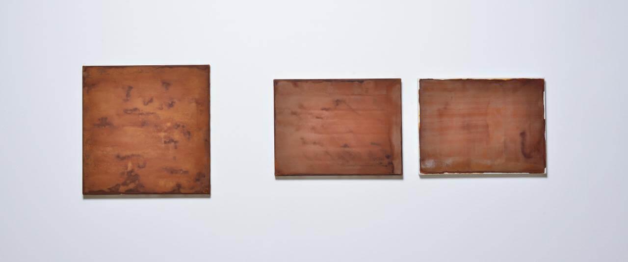 Deshuesadero no. 7 (El paraíso, Zimatlán) | Lecturas de un territorio fracturado | Museo Amparo, Puebla