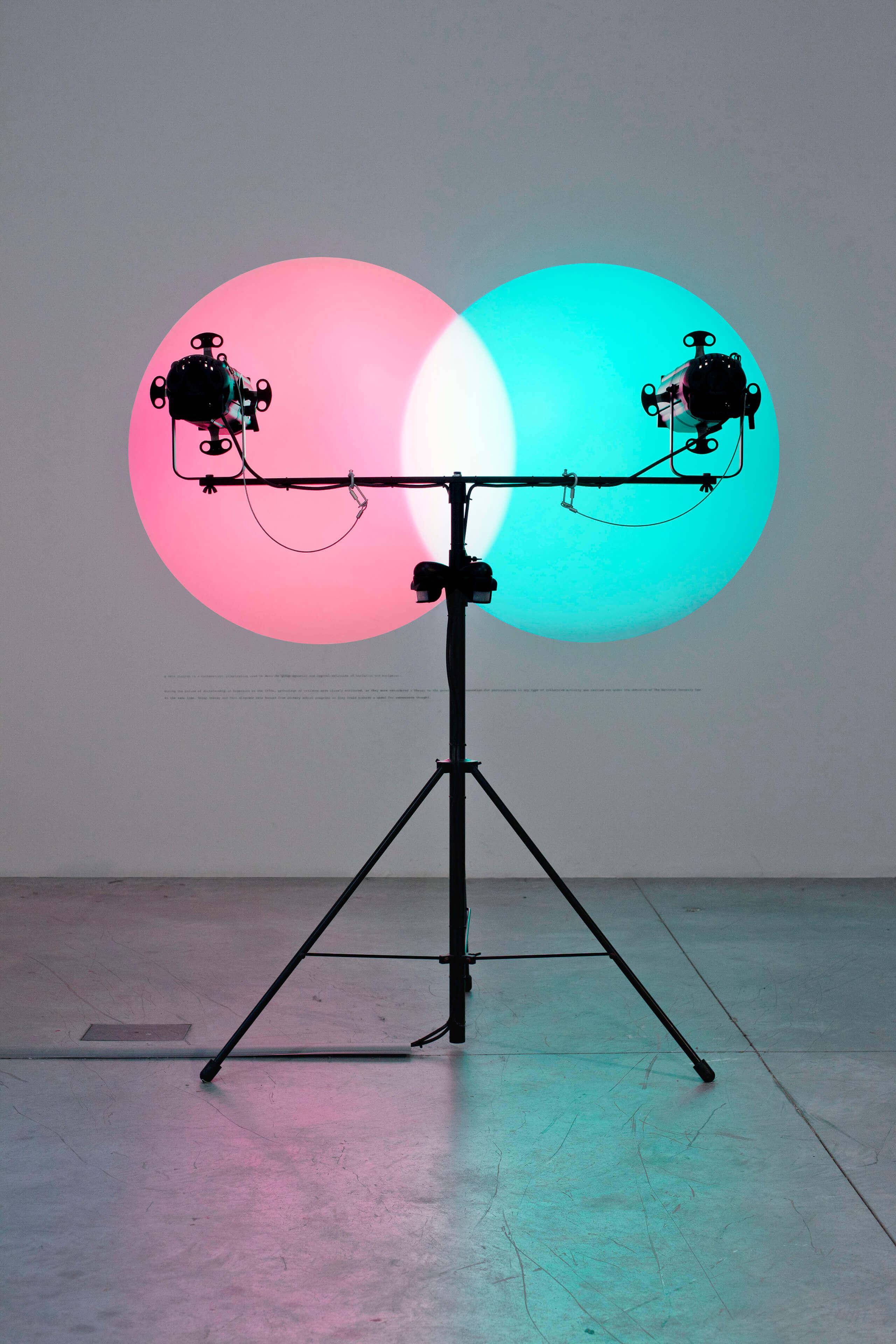 Venn Diagrams (Under the Spotlight) | Portadores de sentido. Arte contemporáneo en la Colección Patricia Phelps de Cisneros. | Museo Amparo, Puebla