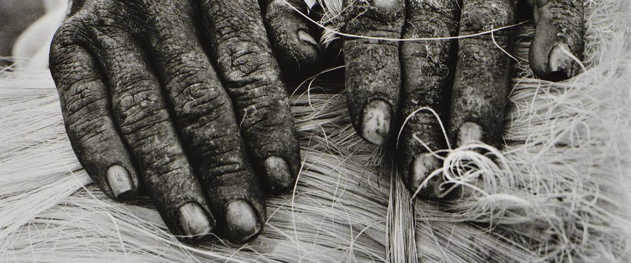 """La vida no es bella. Reportaje-testimonio """"Los ixtleros""""   Rodrigo Moya. México   Museo Amparo, Puebla"""