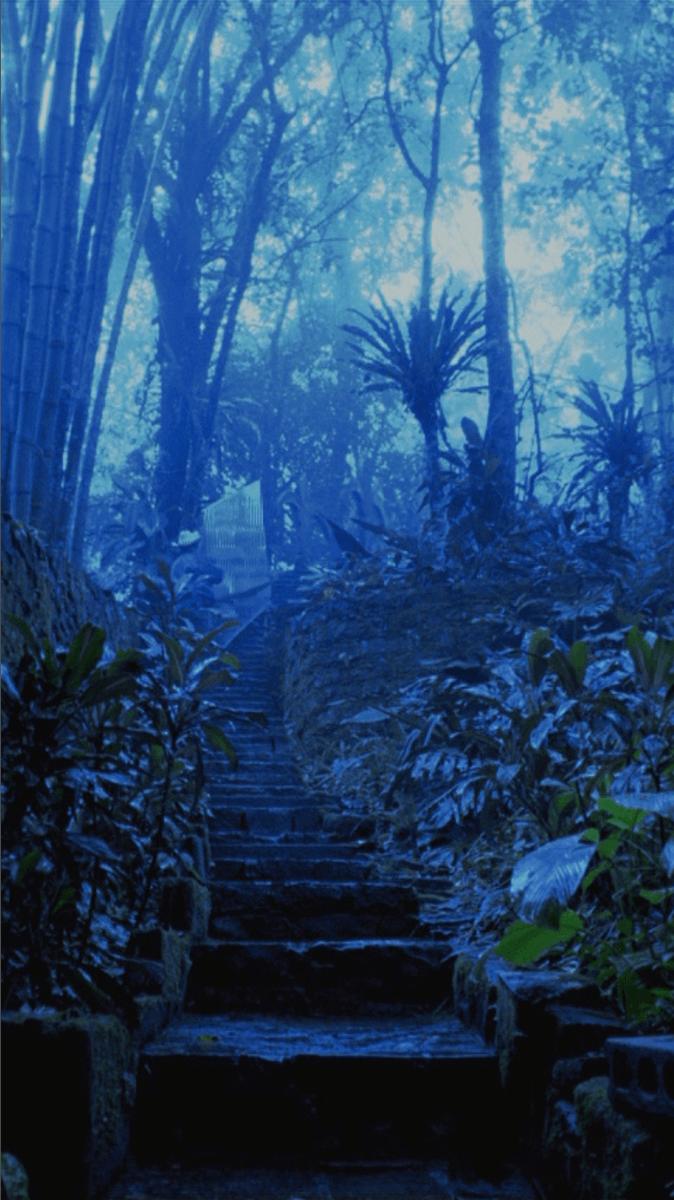 Xilitla: Desmantelado 1 | Melanie Smith. Farsa y artificio | Museo Amparo, Puebla