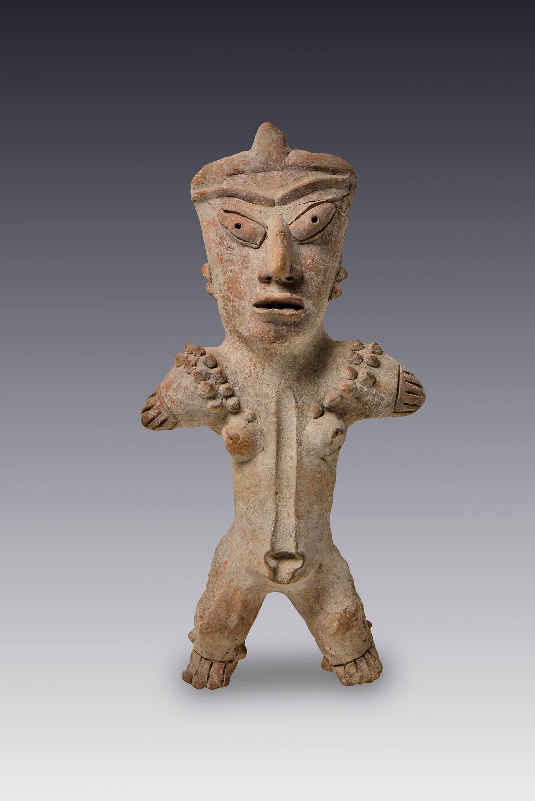Etiqueta Cuerpo humano | Todas las piezas | Museo Amparo, Puebla